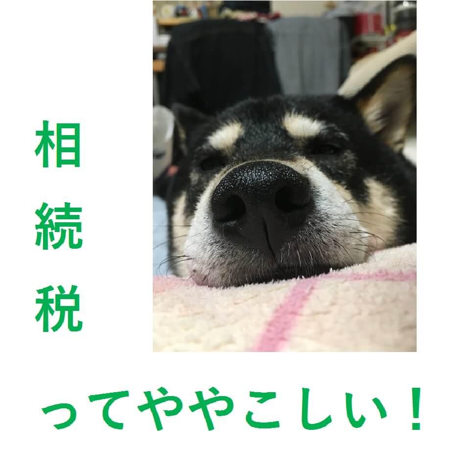 不動産の相続について② ~不動産豆知識4~