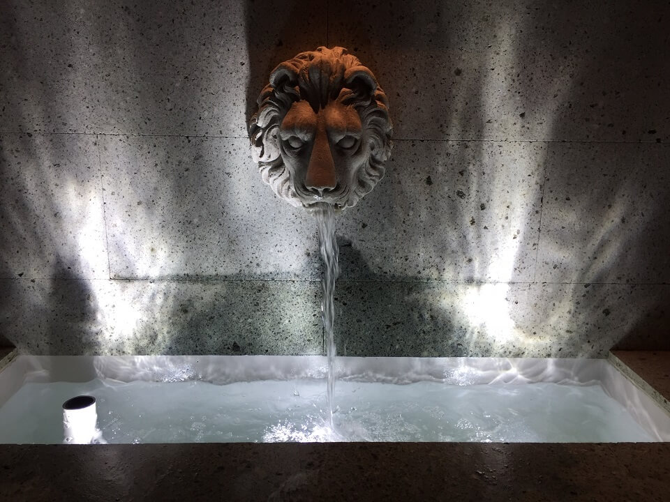 【kikitsu parkの紹介】ライオンさん